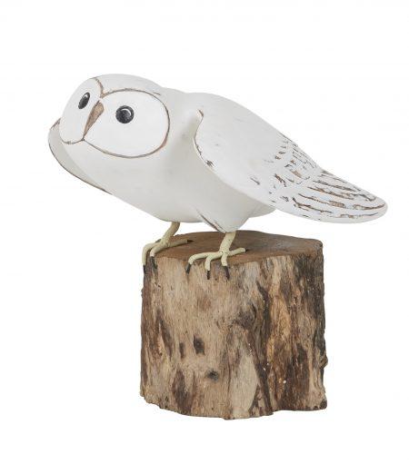 barn owl taking off