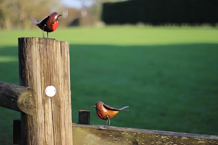 recycled metal bird Robins