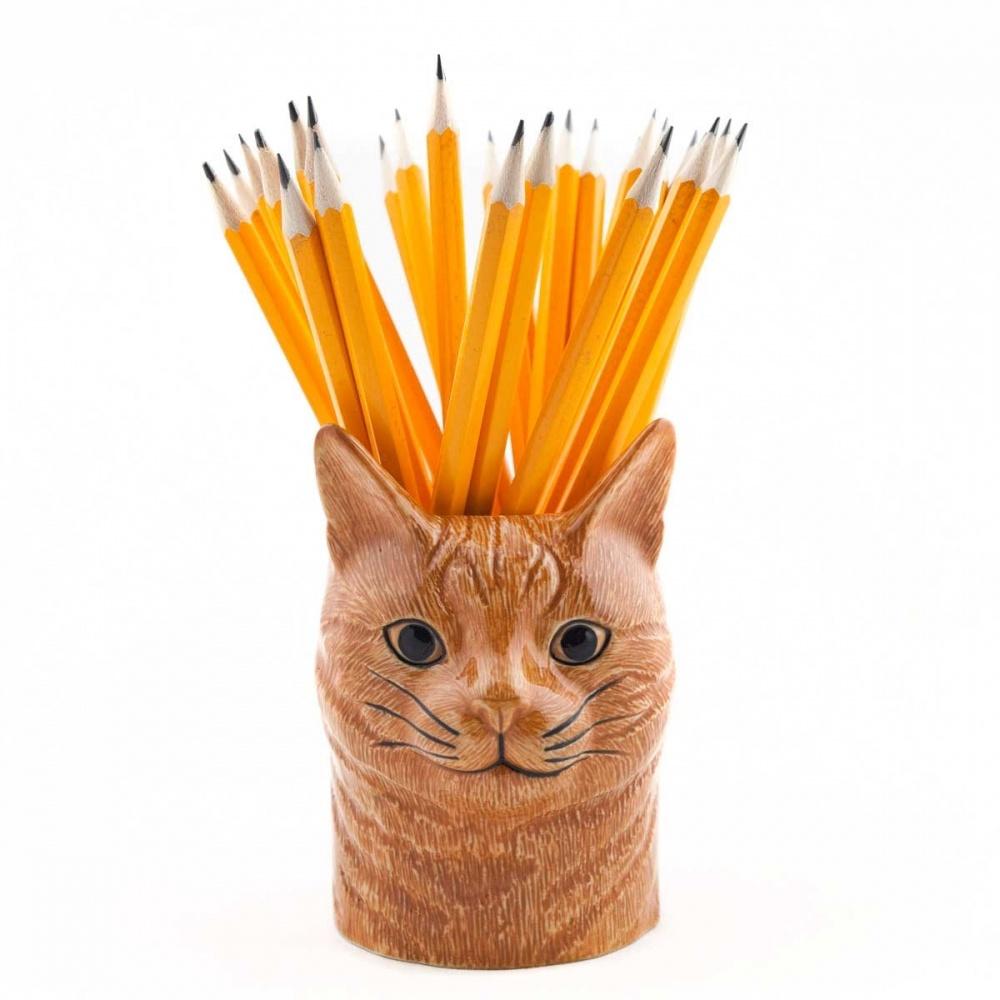 Ginger cat pencil pot with pencils