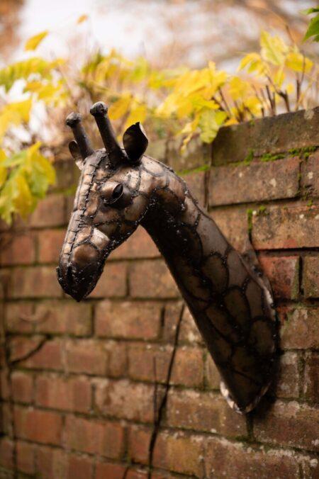 reclaimed metal giraffe head garden wall ornament