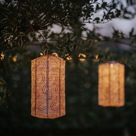 solar lantern pink cylinder shape hanging on branch