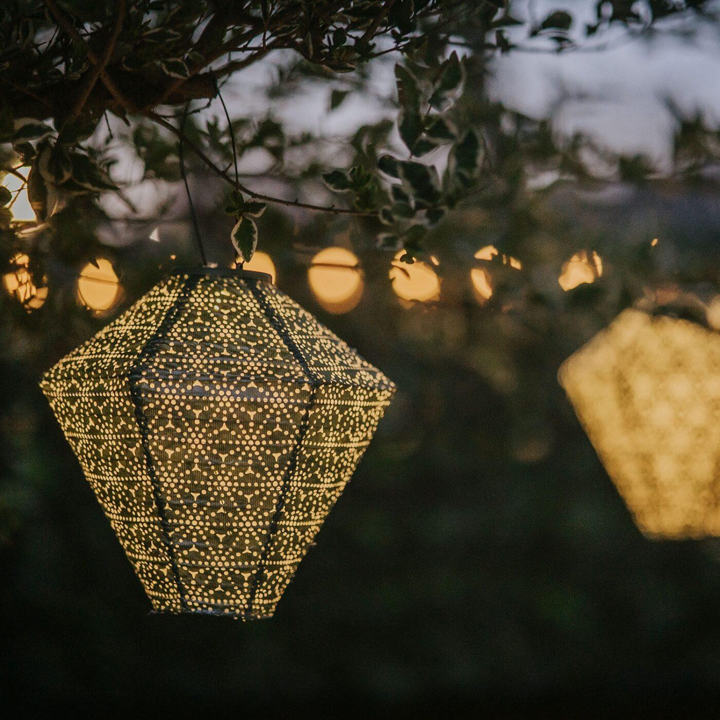 solar lantern green diamond hanging on branch