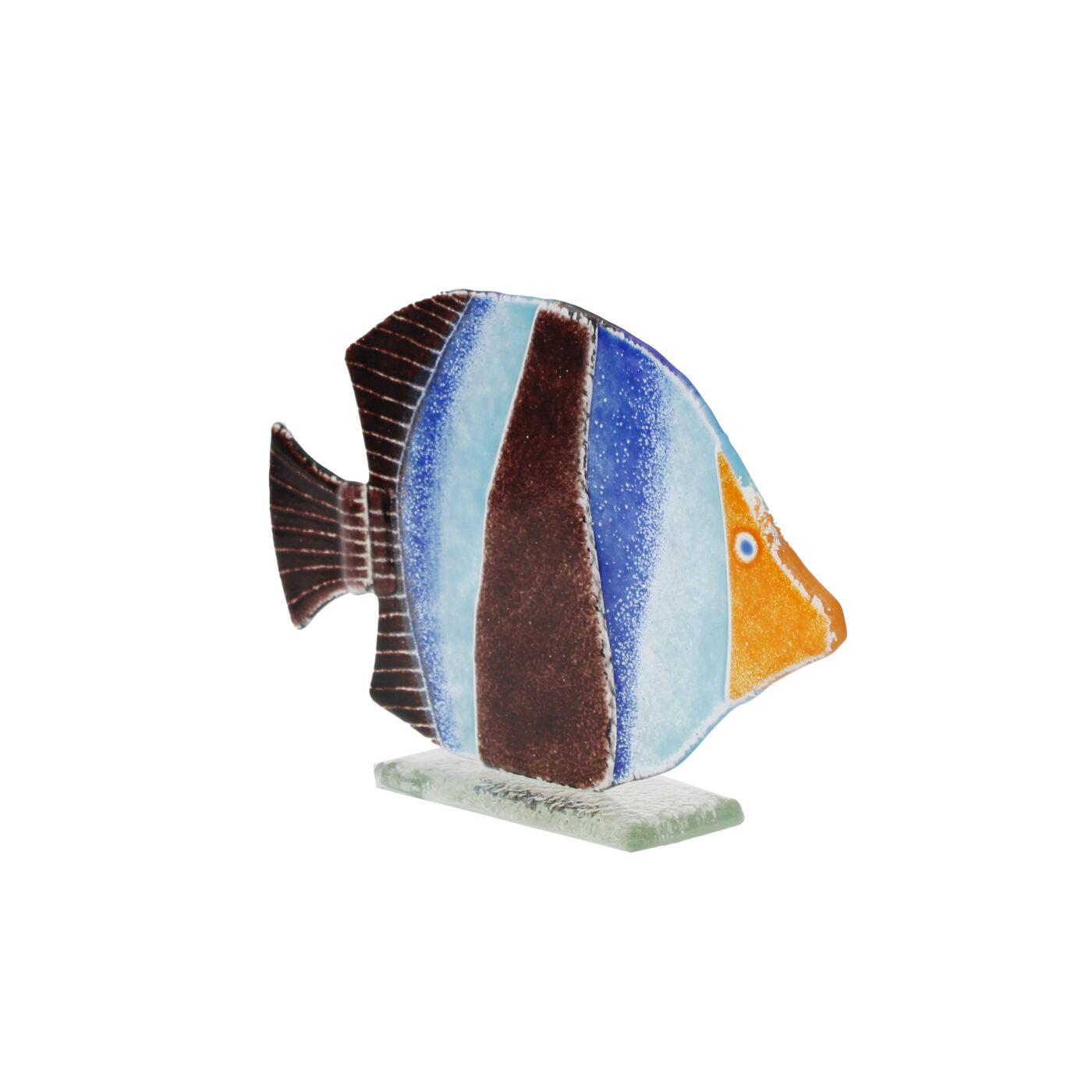 glass fish blue stripe