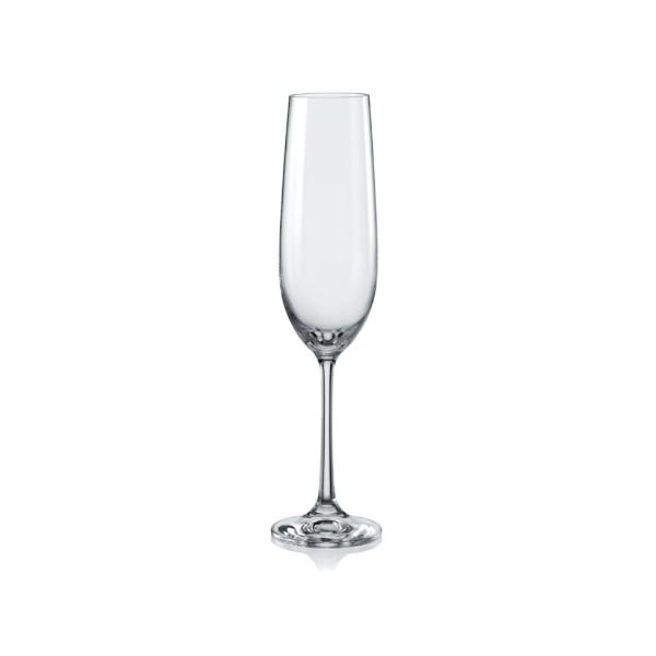 darlington champagne flutes