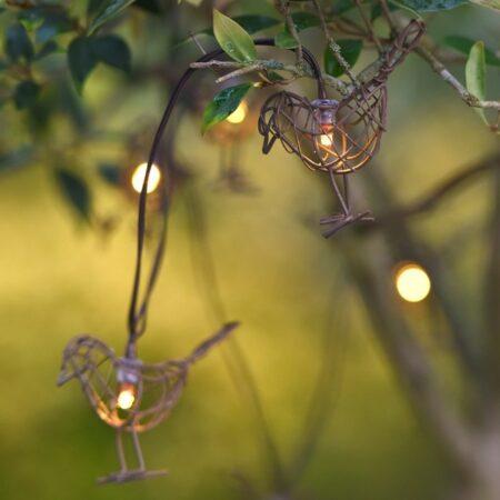 robin lights chain