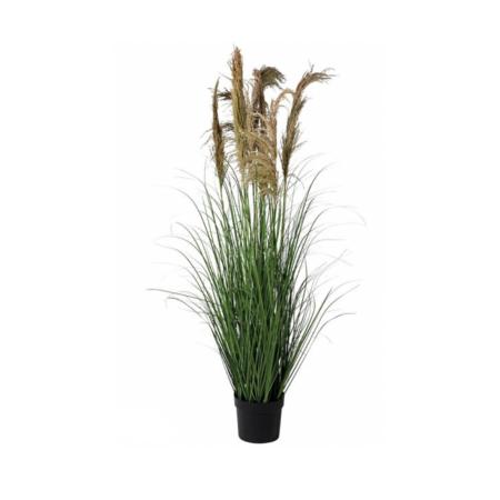 tall faux pampas grass